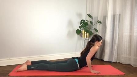 初级瑜伽-眼镜蛇式