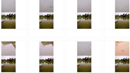 华为手机独有的双镜头拍摄模式