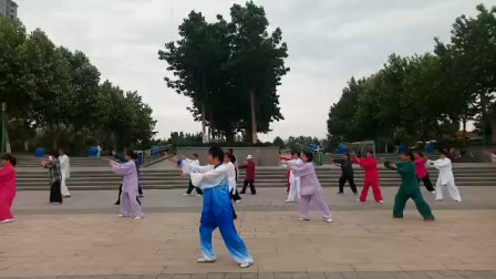 杨氏太极拳85片段(1)