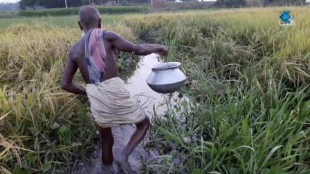 竹箱干海低钓鱼视频与亚洲自然