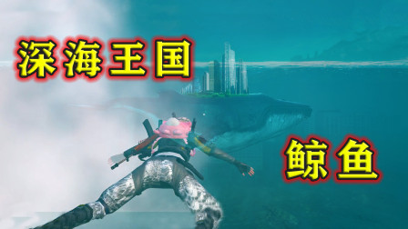 深海藏有大鲸鱼?还有神秘王国?郎哥带你一探究竟!