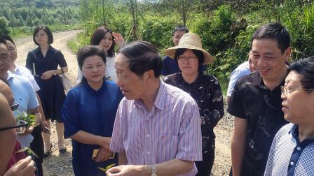四川省生态文明促进会赴理事单位金楠山谷生态园调研