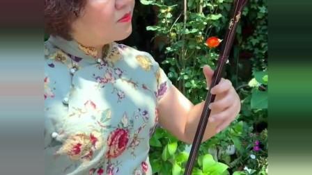 美女二胡演奏《刘海砍樵》,经典的歌曲搭配美女娴熟的技艺真绝了
