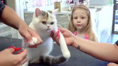 有人给小萝莉送来了一只小猫咪