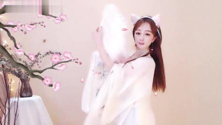 菲天喵 精彩舞蹈 中国风古典舞民族舞中国舞