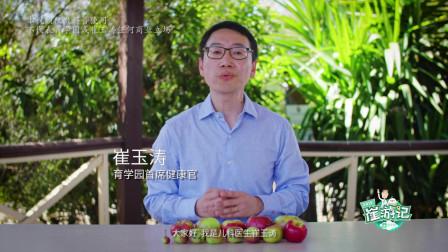 《崔游记》认识有机食品