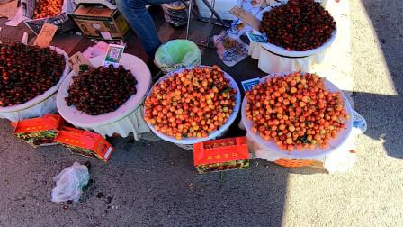 大连樱桃是国内最好吃的樱桃,现在好吃还便宜,最低五元钱一斤