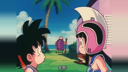 龙珠:琪琪偷偷测试龟仙人实力,龟仙人被打的好惨