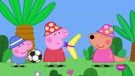 猪西班牙猪丹醇在一个家族恩球飞镖