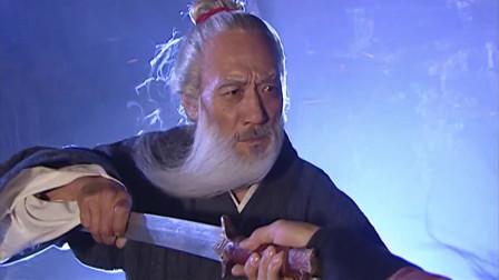 顶尖高手瞧不起白发老头,不料老头使出失传百年连城剑决暴打高手