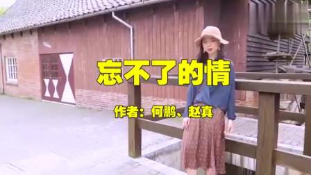 歌手赵真的一首《忘不了的情》DJ版,含情默默,歌声伤感
