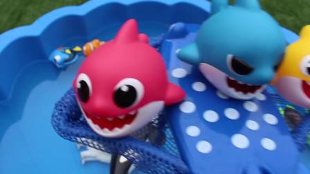 野生海洋动物玩具婴儿和妈妈学习动物名称教育儿童