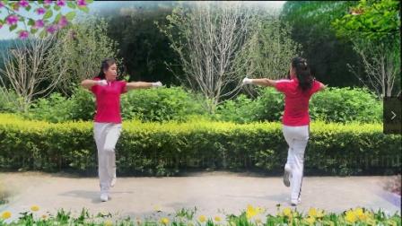 襄阳天天乐快乐舞步健身操第七套第三节(雨荷演示)