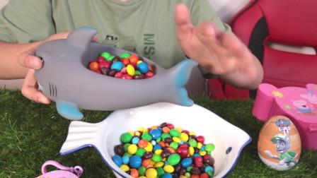 在鱼缸里搅拌糖果唱童谣小鲨鱼