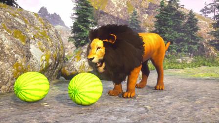 动物故事狮子偷大猩猩的西瓜儿童漫画