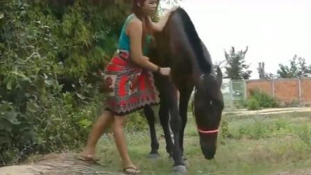 美女和马儿在草地上玩耍,接下来的一幕有点刺激!