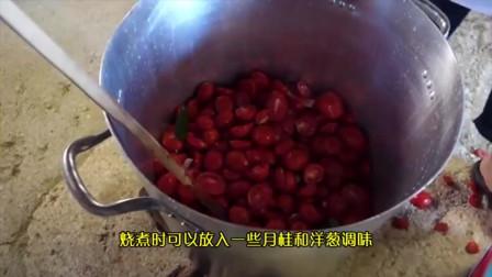 意大利高纯度番茄酱加工,取汁晒制超酸爽