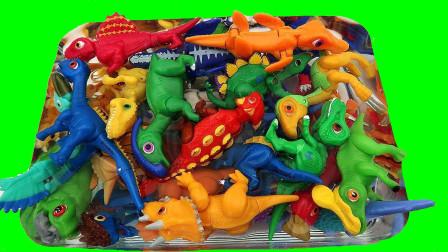 把箱子里的小恐龙拿出来摆放好认识小恐龙