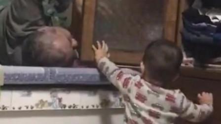 爷爷:差不多就得了, 真以为是铁头啊!