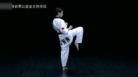 奥运冠军吴静钰教你跆拳道前踢技术
