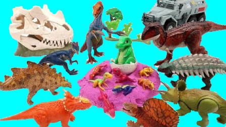 动物卡车把恐龙蛋放到沙滩上拆恐龙蛋发现小恐龙
