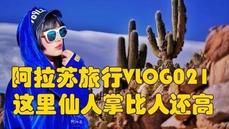 阿拉苏旅行VLOG21来了,围观这里的仙人掌比人还高!