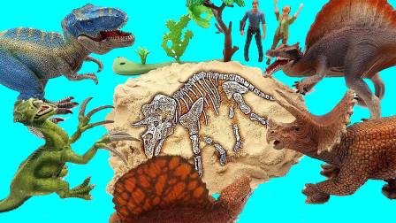 恐龙们在沙滩上发现恐龙化石