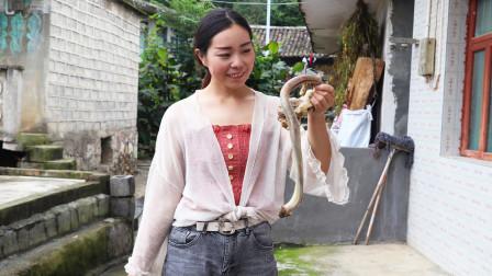 农村妹子第一次做牛鞭,有点害羞,这么长一根不知该从哪下手