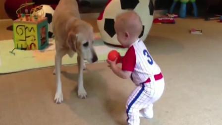 宝宝让狗狗骑车,狗子一脸不情愿,小主人放我下来