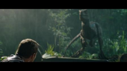 侏罗纪世界2:见到曾经的主人,小恐龙明显不认识他了