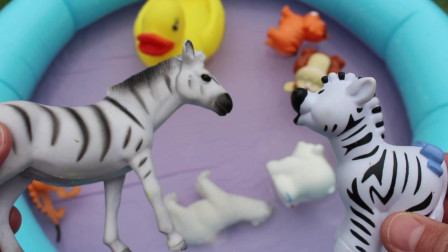 野生动物园动物游泳池玩具婴儿妈妈学习动物名称儿童教育玩具