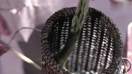 都说英叔的电影不杀生,那么问题来了这条蛇是怎么死的?
