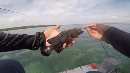 海钓,擒获石斑鱼!鱼情好的没话说啊