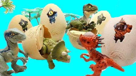 恐龙蛋孵出小恐龙找恐龙妈妈
