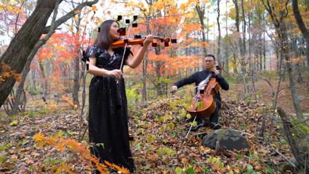 大提琴与小提琴《雁南飞》