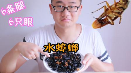 试吃160元一斤【水蟑螂】 吃完才知要先放尿 怪不得一嘴骚味!