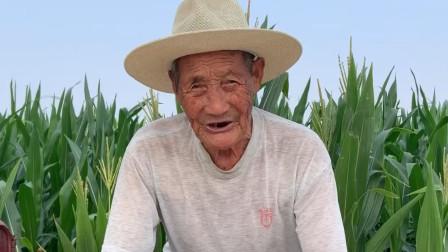 山东济宁最大地主张老麻子有多富?94岁老人亲口告诉你,长见识了