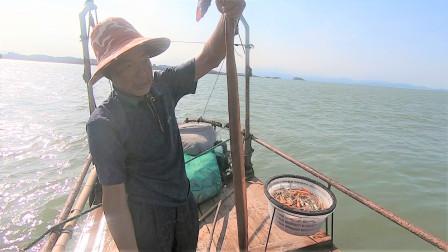 泰叔赶海收排钩,意外抓到一人高的凶猛大海货,真是赚到了