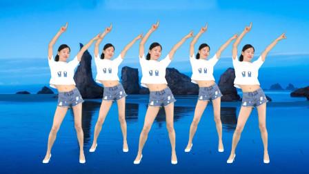 广场舞《DJ野花香》简单步子舞 减肥健身操!