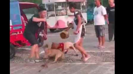 遛狗男怂恿自家狗成这样 也是醉了