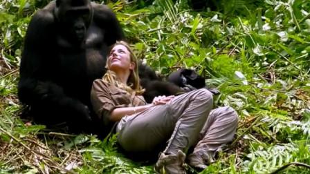26岁外国美女和大猩猩相爱,婚后生活曝光,真相难以接受