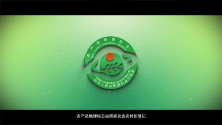 国际农展会中国农产品地理标志宣传