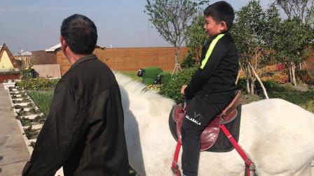 【7岁半】11-3哈哈骑白色骏马,很帅气IMG_9347
