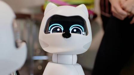 AI宠物机器人KIKI