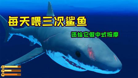 木筏求生20:征服鲨鱼,成为大海霸主,开启新篇章!