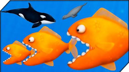 美味汪洋:变异食人鱼进入海洋狂吃各种鲨鱼!