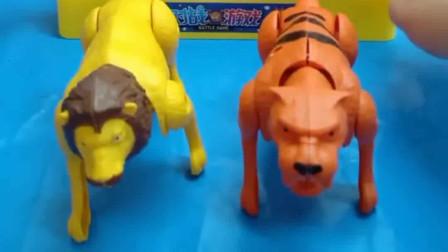 少儿益智亲子玩具:狮子和老虎,谁厉害一些呢?