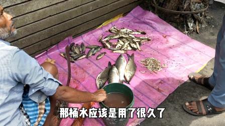 实拍印度菜市场,杀鱼是这样杀的,说实话看了不想吃