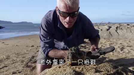 世界上最毒的鱼有多可怕?老外用拖鞋做实验,隔着屏幕都害怕