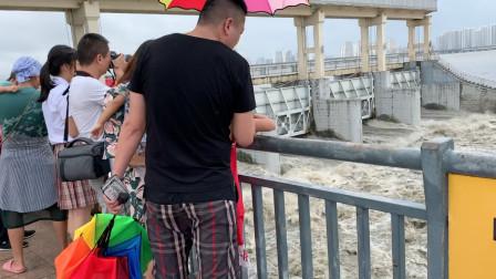 台风利奇马将登陆山东,实拍临沂小埠东橡胶坝开闸放水